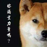 宏康 梁's Photo