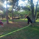 Juggling + Slackline + Acroyoga in the riverpark's picture