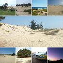 Camping,trekking Playa Las Cruces-Litoral Central's picture