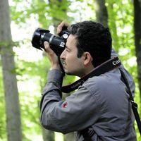 Damoon Haghighi Fard's Photo