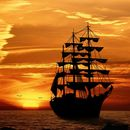 Hanse Sail Sunset Ship Watching's picture