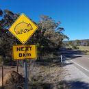 Рассказ о путешествии по Австралии's picture