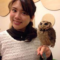 Miki Hatano's Photo