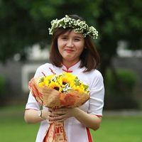 Trần Trinh's Photo