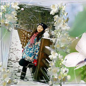 Ice Zhou's Photo