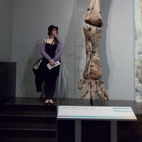 Émélie Caron's Photo