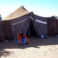 Ali berber's Photo