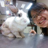 Kathy Chang的照片