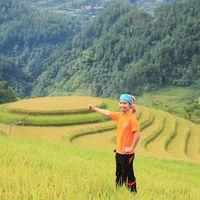 Tai Duong's Photo