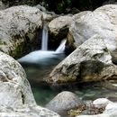 Orrido Botri: Canyon of Tuscany Water Trekking's picture