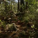 Lycian Way Hike!'s picture