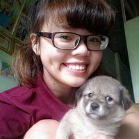 Nguyen  Minh Dieu's Photo
