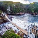 Garden Route's picture