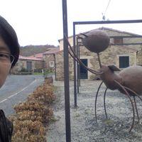 Hyeung Kyo Kim's Photo