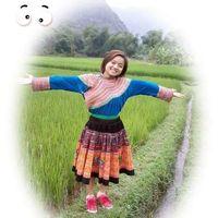 Phong Anh's Photo