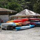 SUP/kayak At Chaguaramas's picture