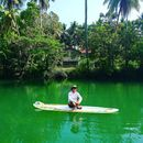 Paddle Boarding at Loboc River's picture