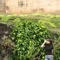 Fotos de Trang Hà