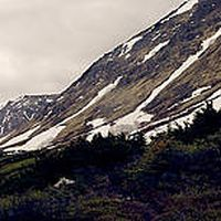Christopher Gilmore's Photo