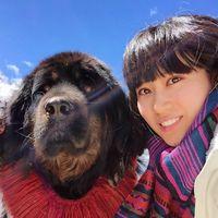 Fotos de Xin Li
