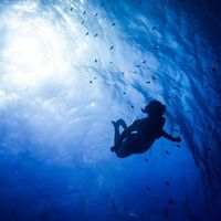 Lara Lechner's Photo
