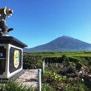 Foto de Hiking To Kerinci Mountain