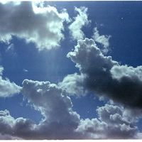 Billy Brown's Photo