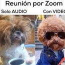 Time Reunión Virtual 's picture
