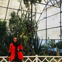 sara nasiri's Photo