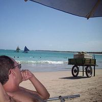 Marco Chaves's Photo