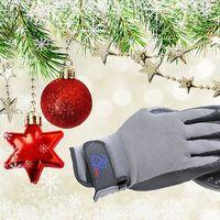 Grooming Glove's Photo