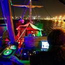 Techno party on the Boat's picture