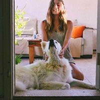Daya Tsarfaty's Photo