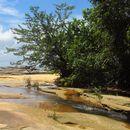 Розповідь про Малайзію ч.2: острів Борнео's picture