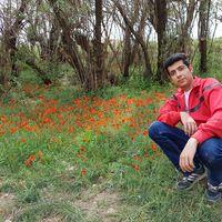 Majid Parsi's Photo