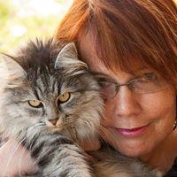 Nicole Zurbuchen's Photo