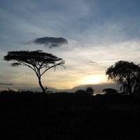 Fotos von Samuel Sindhu