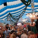 Springfest's picture