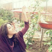 sara rouzbahani's Photo
