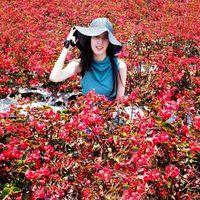 Sheila yuswan's Photo