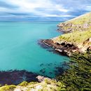 hitchhiking the south island's picture