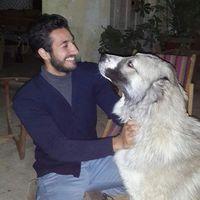Adham Elhawary's Photo