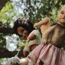 Island of the Dead Dolls - Isla de las Muñecas's picture