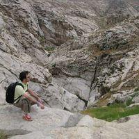 Ali Malek's Photo