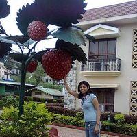 Sheela Anthwal Jakhmola's Photo