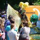 """""""Karneval der Kulturen"""" Street Parade's picture"""
