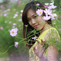 Van Le Hong's Photo