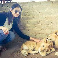 Pooja Upadhyaya's Photo