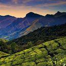 Tirupur & Kodaikanal Road trip's picture
