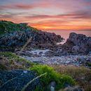 Photo de l'événement Explore the coast of Brittany and surf